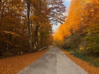 Αναμνήσεις και εικόνες από τον φετινό Rodopi Ultra Trail
