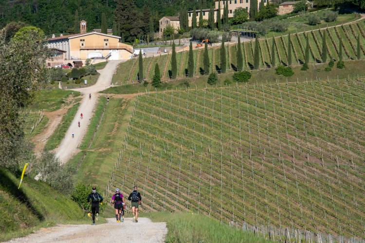 The 4th Chianti Ultra Trail comes on March 26-27, 2022 with a new 100Km race and many surprises - Matteo Matteuzzi, technical director of CUT, in an exclusive interview at Advendure!