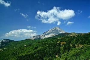 Dirfys Trail Run, νέος αγώνας βουνού στην Δίρφυ στις 28 Νοεμβρίου